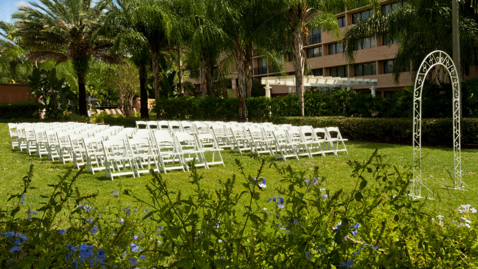 Sheraton orlando wedding